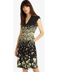 Phase Eight - Melodie Floral Dress - Lyst