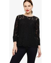 Phase Eight - Bettie Lace Blouse - Lyst