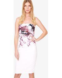 Phase Eight - Elin Blossom Print Dress - Lyst