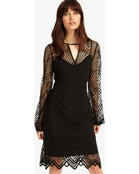 Phase Eight MAGGIE Lace Dress in Black - Lyst 7e3e7bc24