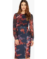 Phase Eight - Callie Floral Pencil Dress - Lyst