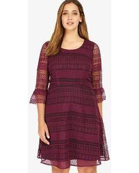 Phase Eight - Demelza Lace Dress - Lyst