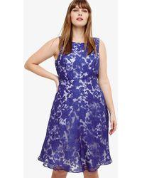 Phase Eight - Kew Dress - Lyst
