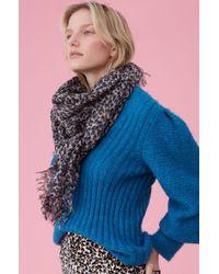 Rebecca Taylor - Leopard Print Wool Scarf - Lyst