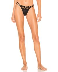 Flora Nikrooz - Showstopper Thong In Black - Lyst