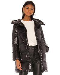 Add Hooded Down Jacket - Black