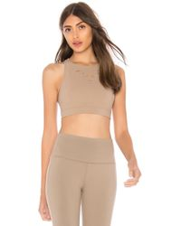 Alo Yoga - Ripped Warrior Sports Bra In Brown - Lyst