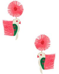 All Things Mochi - Punk Parrot Earrings In Fuchsia. - Lyst