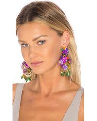 Mercedes Salazar - Fiesta Flor Tropical Earrings - Lyst