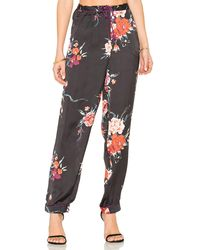 Band Of Gypsies - Botanical Floral Pant - Lyst