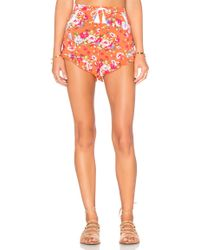 Spell & The Gypsy Collective - Revolver Frill Shorts - Lyst