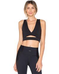Strut-this - Phoenix Sports Bra - Lyst