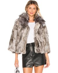 Adrienne Landau - Fur Collar Rabbit Jacket In Gray - Lyst
