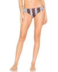 Rachel Comey - Reception Bikini Bottom - Lyst