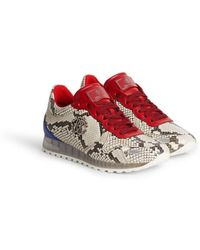 Roberto Cavalli - Snakeprint Lace Up Sneakers - Lyst