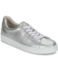 Esprit - Gwen Lace Up Shoes (trainers) - Lyst