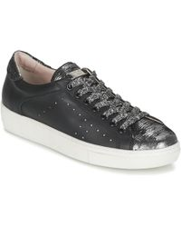 Tosca Blu - Saril Shoes (trainers) - Lyst