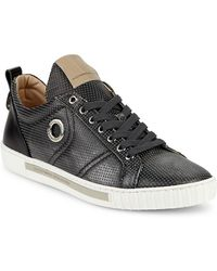 Alessandro Dell'acqua - Alessandro Dell''acqua Perforated Leather Lace-up Sneaker - Lyst