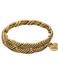 ALEX AND ANI - The New Day Rolling Hills Expandable Wrap Bracelet - Lyst