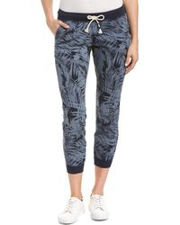 Sol Angeles - Palm Jogger Pant - Lyst