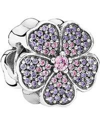 PANDORA - Sparkling Primrose Pink And Purple Silver Charm - Lyst
