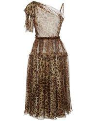 Dolce & Gabbana - Runway One Shoulder Leopard Silk Dress - Lyst