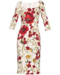Dolce & Gabbana - Daisy And Poppy Print Dress - Lyst