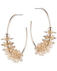 DANNIJO Ella Embellished Hoop Earrings - Metallic