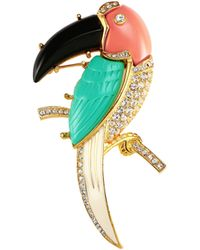 Kenneth Jay Lane - Embellished Parrot Pin - Lyst