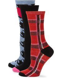 Betsey Johnson - Three-pack Printed Crew Sock Gift Set - Lyst