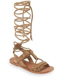 7d916054272 Lyst - Free People  dahlia  Tall Gladiator Sandal in Black