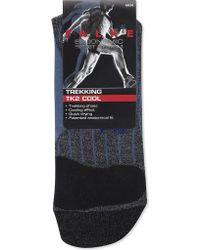 Falke - Trekking Tk2 Cool Socks - Lyst