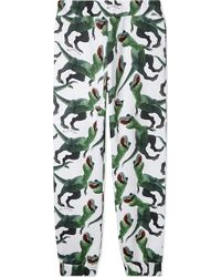 Au Jour Le Jour - Pure Cotton Dino Print Jogging Bottoms 4-14 - Lyst
