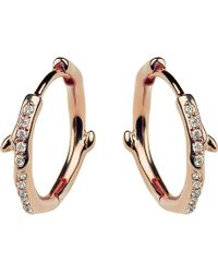 Shaun Leane - Cherry Branch Rose-gold Vermeil And Diamond Hoop Earrings - Lyst