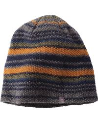 Toad&Co - Birch Stripe Beanie - Lyst
