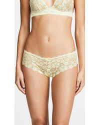 Honeydew Intimates - Camellia Lace Hipster - Lyst
