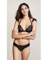 Hanky Panky - After Midnight Wink Bralette - Lyst