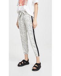 e133d72601f91 Pam & Gela - Snake Print Tie Pants - Lyst