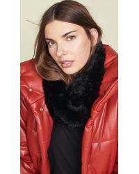 Adrienne Landau - Knit Rex Fur Loop Scarf - Lyst