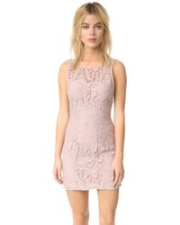 BB Dakota - Thessaly Sleeveless Lace Dress - Lyst