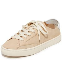 Soludos - Ibiza Classic Lace Up Sneakers - Lyst