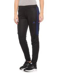 adidas - Tiro 17 Training Pants (for Women) - Lyst