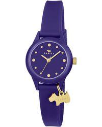 Lacoste - Radley Watch It Watch - Lyst
