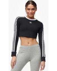 0c588d0b09a adidas Originals - Strict/clash Cropped Long Sleeve T-shirt - Lyst