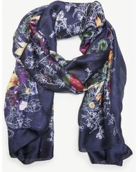 Sole Society - Ornate Floral Print Scarf - Lyst