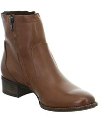 Paul Green - 8063001 Women's Low Ankle Boots In Brown - Lyst