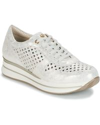 Pitillos - Manimo Shoes (trainers) - Lyst