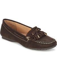 Sebago - Meriden Kiltie Women's Loafers / Casual Shoes In Brown - Lyst