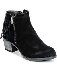 Wildflower Dafne Women's Low Ankle Boots In Black
