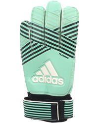 adidas - Ace training gardien hommes Gants en bleu - Lyst